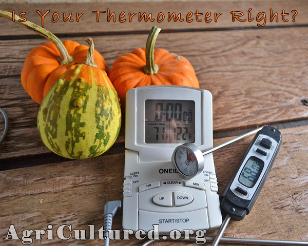 it is easy to calibrate your meat thermometer to be sure it is reading the correct temperature