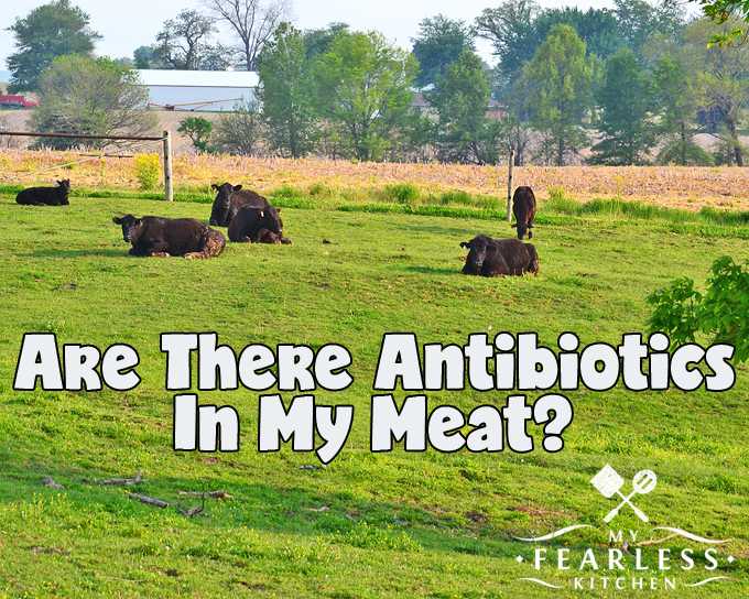 Are There Antibiotics In My Meat? from My Fearless Kitchen. Even though many farmers do treat their sick animals with antibiotics, there are never antibiotics in meat. Farmers follow strict rules to make sure this never happens.