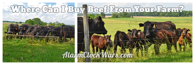 Even though we raise beef cattle, we still buy beef from someone else! It's not exactly easy to find beef from our farm, but all beef is good beef!
