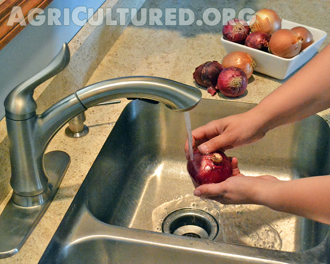 kitchen scrub brush rustic faucets how to wash fresh produce - my fearless