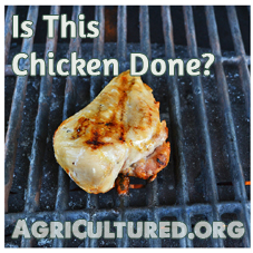 This chicken breast is fully cooked, but you can't tell from only looking at the outside.