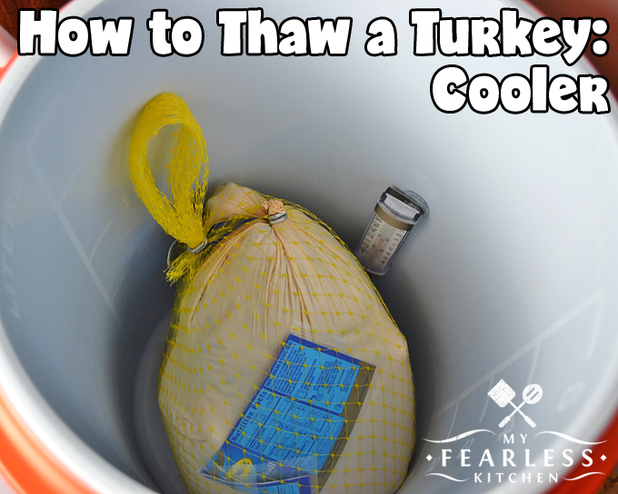 How to Thaw a Turkey from My Fearless Kitchen. It takes a little planning to thaw a turkey. You need a big enough space for the turkey, the right temperature, and enough time for the turkey to thaw.