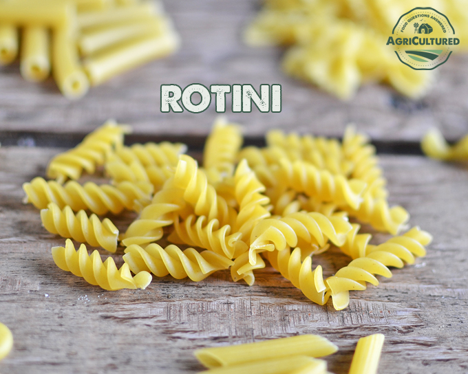 How to Use Different Types of Pasta - My Fearless Kitchen