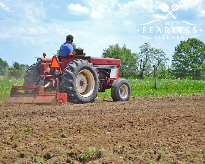using a tractor to prepare the soil in the vegetable garden