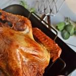 Top 10 Turkey Tips