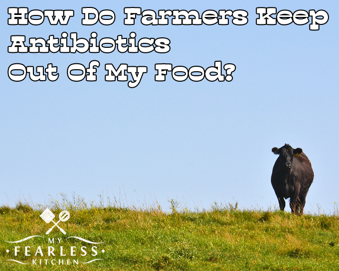 How Do Farmers Keep Antibiotics Out Of My Food? from My Fearless Kitchen. When farmers use antibiotics to keep their animals healthy, they must follow strict rules and use the medicines appropriately. Find out how these requirements keep antibiotics out of your food.