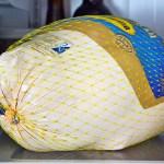 What's That Stuff Inside My Turkey?