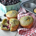 Blackberry Muffins