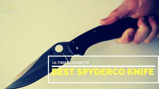 your guide to,Best Spyderco Knife