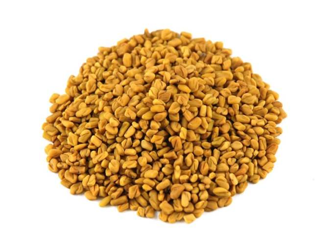 treatment and exercises for sciatica pain relief - Fenugreek seeds - Image - 1