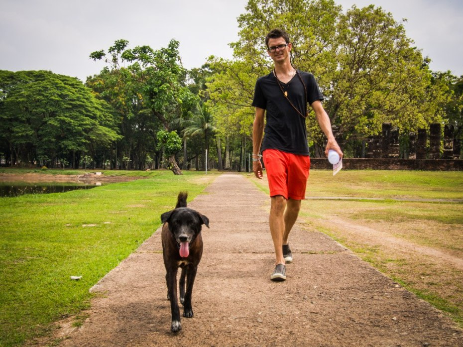 This fella followed us for about half an hour at Sukhothai Historical Park.