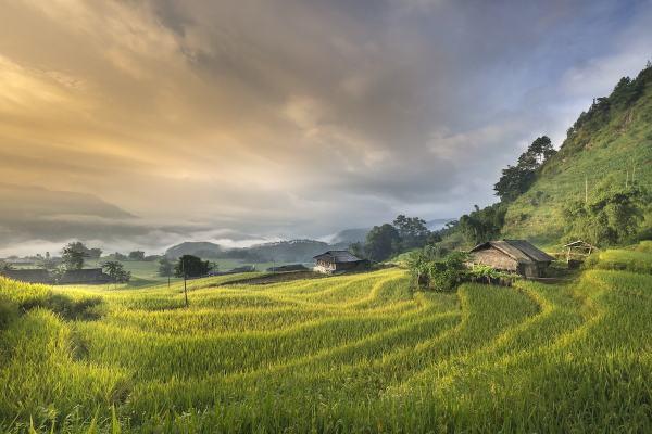 thailand vietnam