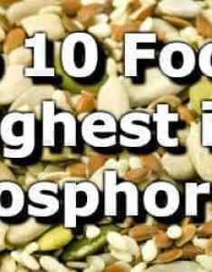 also top foods highest in phosphorus rh myfooddata