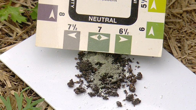 managing soil ph levels