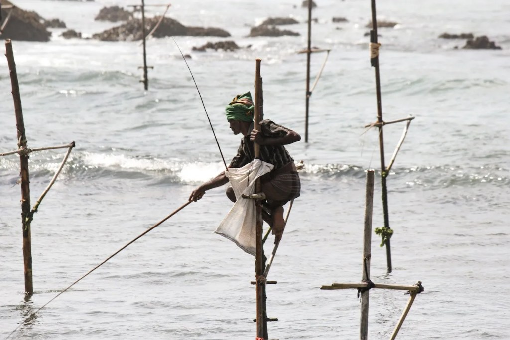 Stilt fisherman of Koggola - Sri Lanka Travel Blog