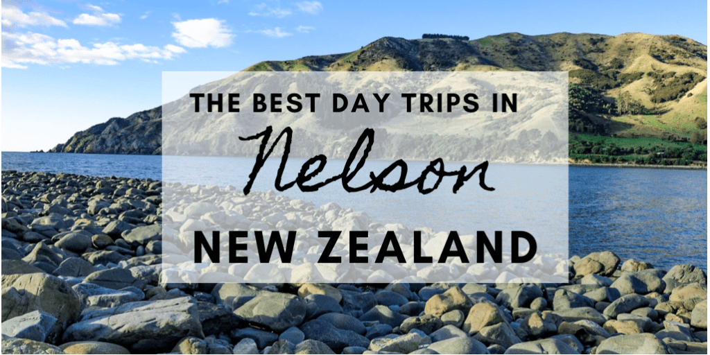 Cable Bay - the best day trips in Nelson, New Zealand