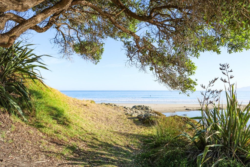 Best places to visit in the North Island, New Zealand - Tawharanui