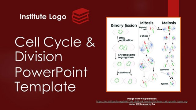 free-cell-cycle-division-google-slides-themes-ppt-template-presentation