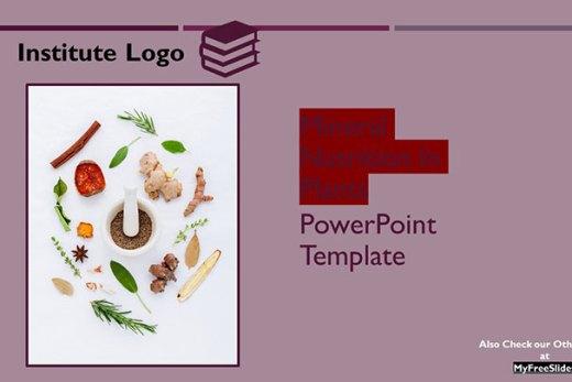 free-mineral-nutrition-google-slides-themes-ppt-presentation