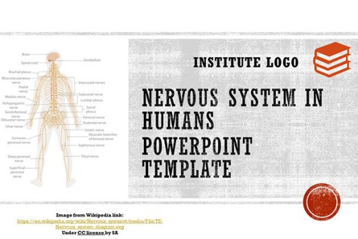 free-nervous-system-google-slides-themes-ppt-template-presentation
