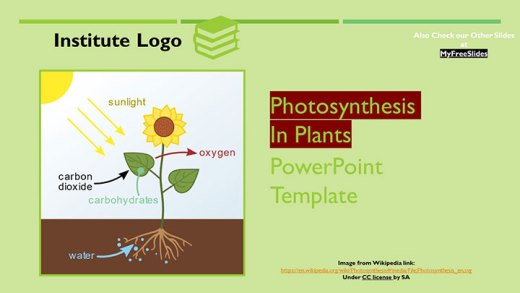 free-photosynthesis-higher-plants-google-slides-themes-ppt-template-presentation