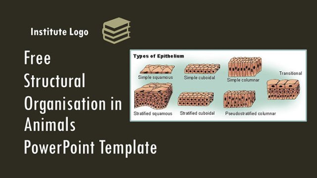 free-structural-organisation-in-animals-google-slides-themes-ppt-template-presentation