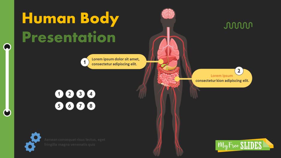 Human Body Parts Presentation