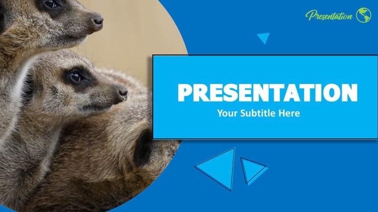 Free Meerkat Google Slides Themes