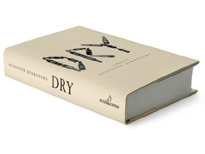 dry book review - myfrenchtwist.com