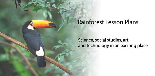 rainforest lesson plans