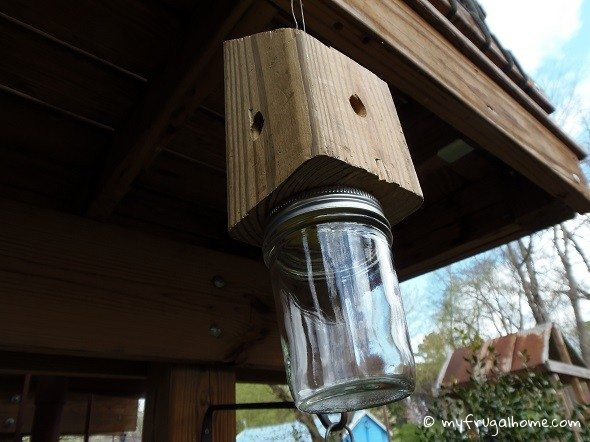 Finished Carpenter Bee Trap