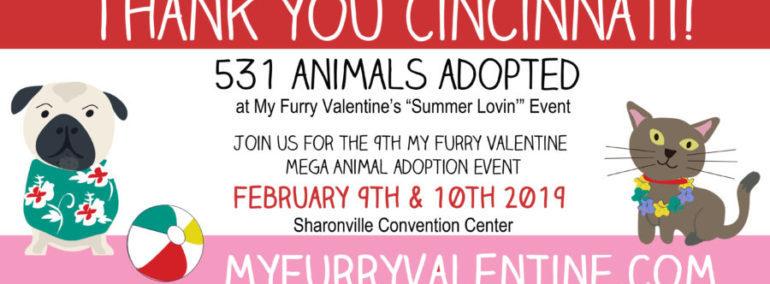My Furry Valentine Cincinnatis Largest Pet Adoption