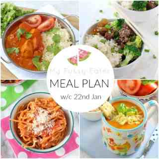 FAMILY MEAL PLAN W/C 22nd JANUARY 2018
