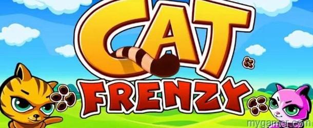 Cat Frenzy Banner