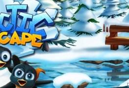 Arctic Escape Banner