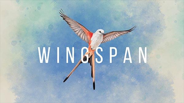wingspan xbox preorder 600x338 1
