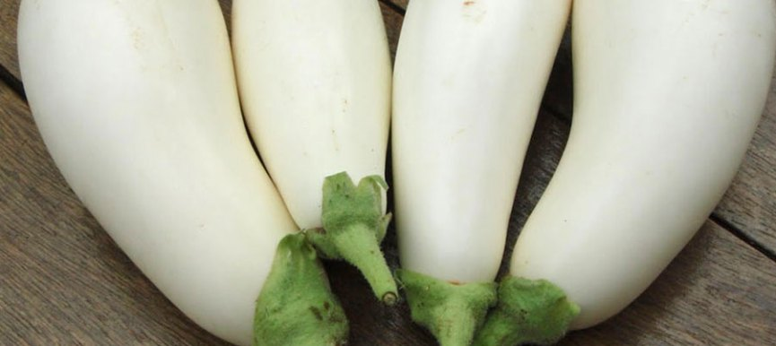Brinjal (বেগুন) White Seeds - (180 to 200 seeds) - MGS1018