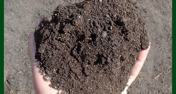 -Ready Mix Soil - Potting Mix - MGSS3020