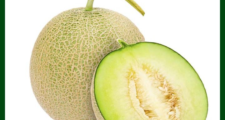 Muskmelon – Princess F1 Hybrid – 10 seeds - MGS1314