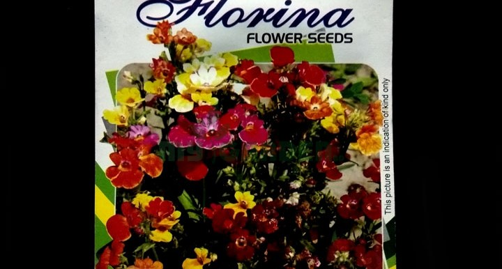 Nemesia – (50 seeds) – Imperial - Indian
