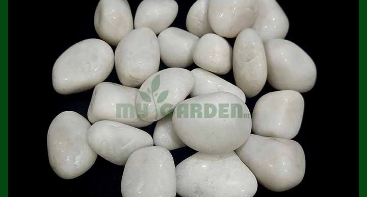 - Ivory White Pebbles - Glossy - (30 to 50 mm) - MGSP6034