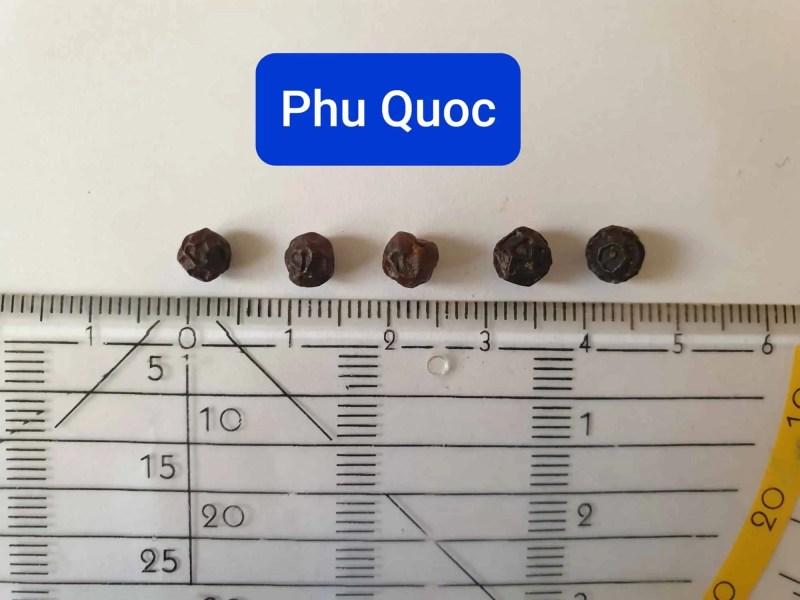 Phu Quoc red peppercorns