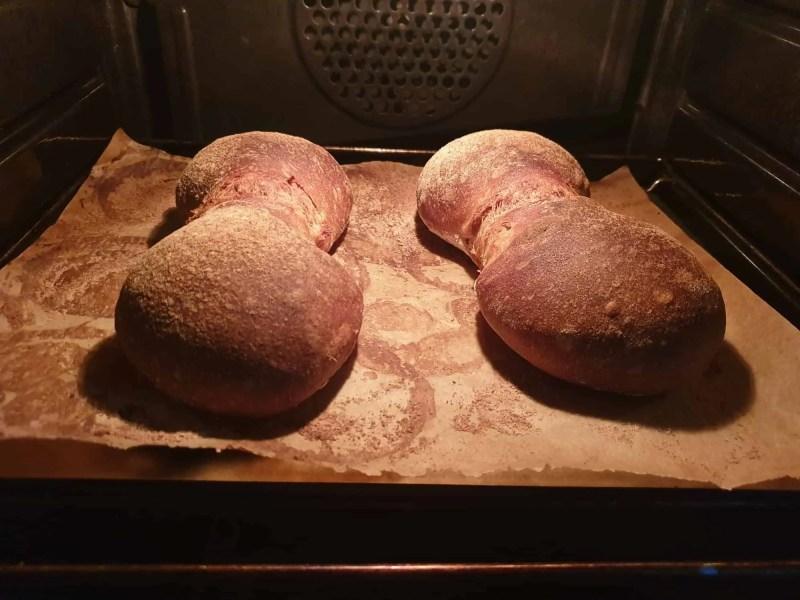 Swiss sourdough bread rolls fully baked