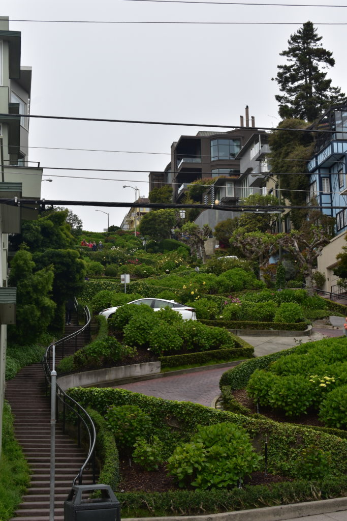 "The world's ""crookedest"" street, Lombard Street"