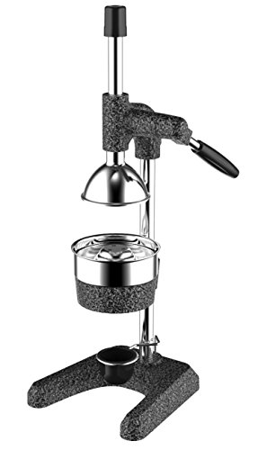 25 Most Wanted Commercial Juicers 2019