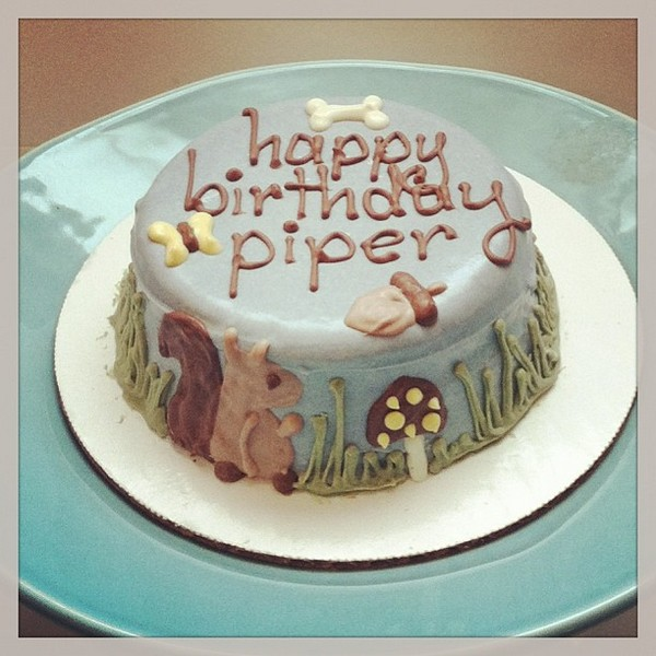 Birthday Cake For Dogs 30 Easy Doggie Birthday Cake Ideas
