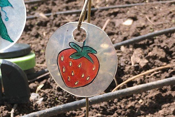 Diy Reusable Garden Markers