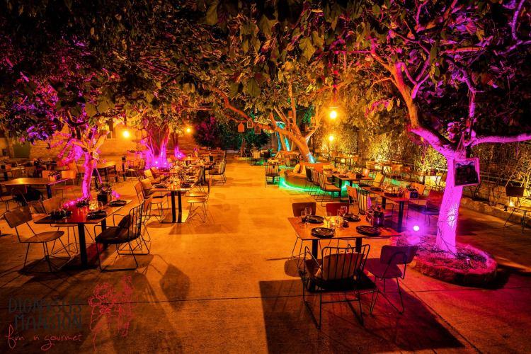 Taste of Cyprus - restaurant