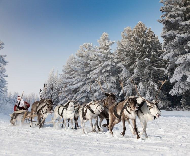 geschiedenis van de kerstman - rendieren