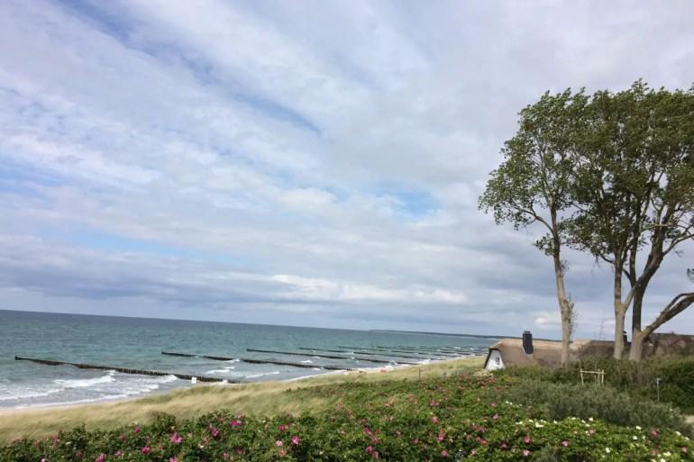 Reetdachhäuser am Meer und Künstlerateliers in Ahrenshoop